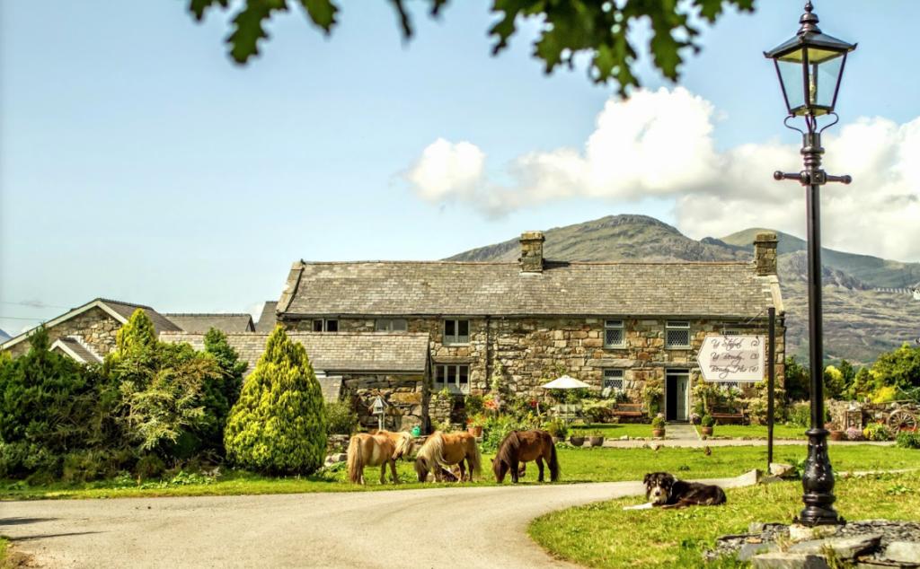 Tyddyn Du Farm in Gwynedd