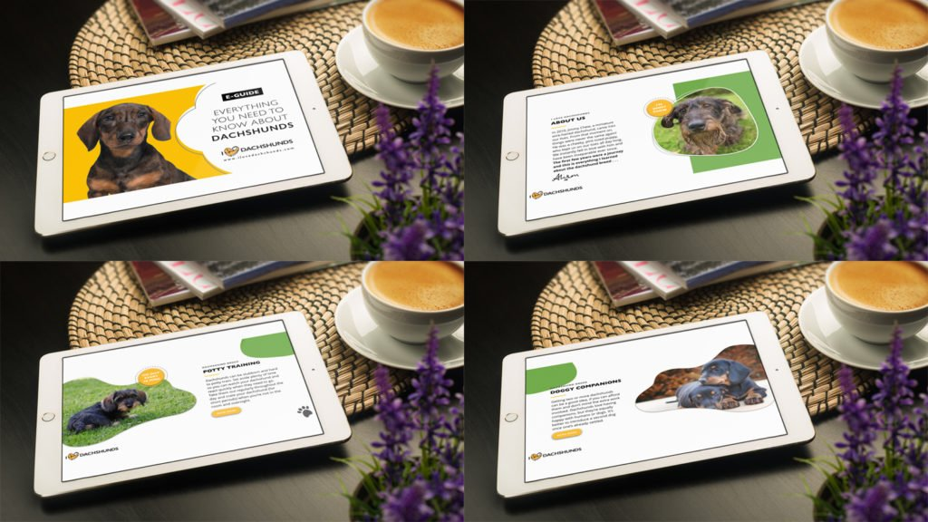 Sample pages from the digital E-Guide