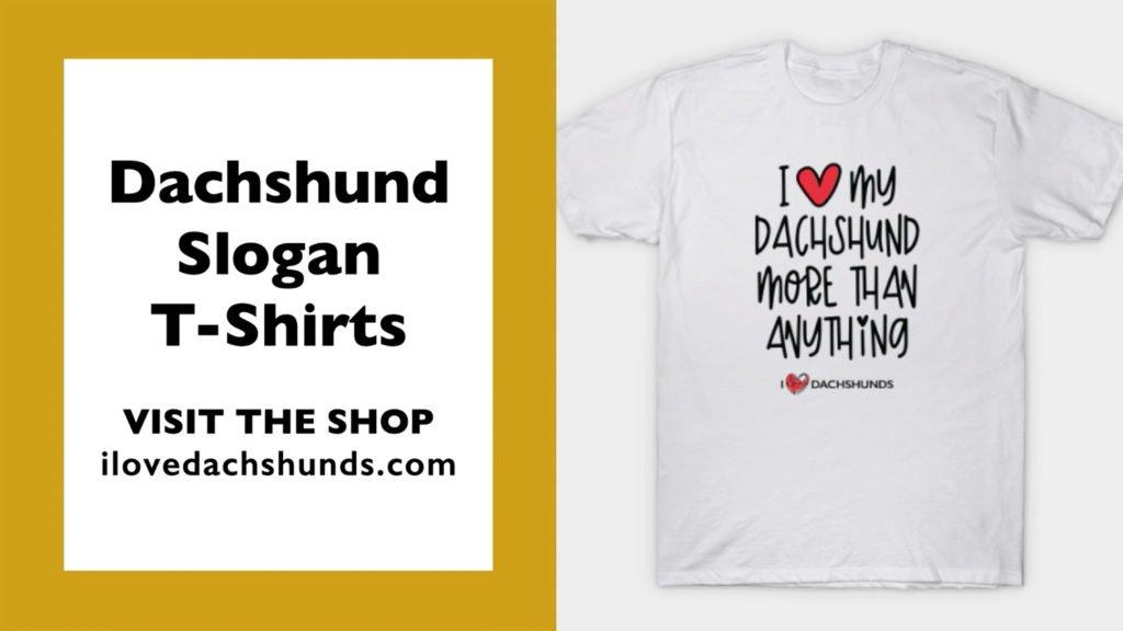 "Dachshund Slogan T-Shirt Design saying ""I love my dachshund more than anything"""